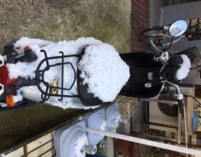 雪バイクうしろ